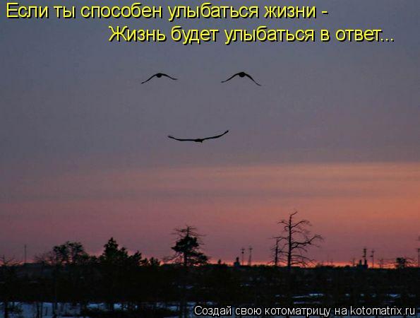 Котоматрица: Если ты способен улыбаться жизни - Жизнь будет улыбаться в ответ...