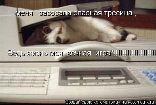 """Котоматрица: меня   засосала опасная тресина , Ведь жизнь моя  вечная  игра""""!!!!!!!!!!!!!!!!!!!!!!!!!!!!!"""