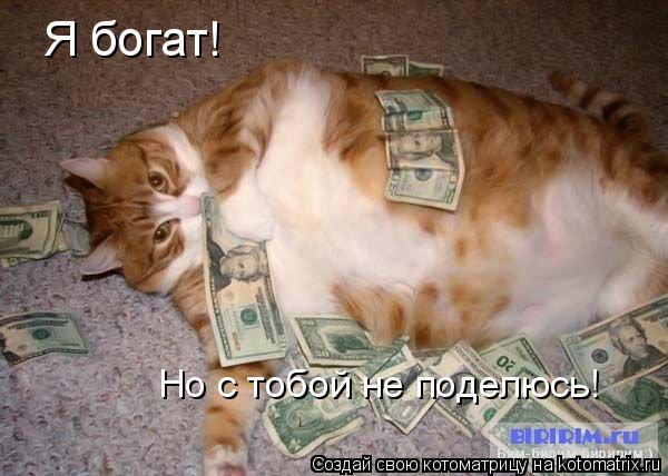 Котоматрица: Я богат! Но с тобой не поделюсь!