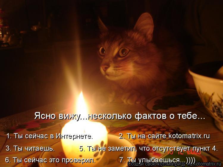Котоматрица: Ясно вижу...несколько фактов о тебе... 1. Ты сейчас в Интернете.             2. Ты на сайте kotomatrix.ru 3. Ты читаешь.            5. Ты не заметил,