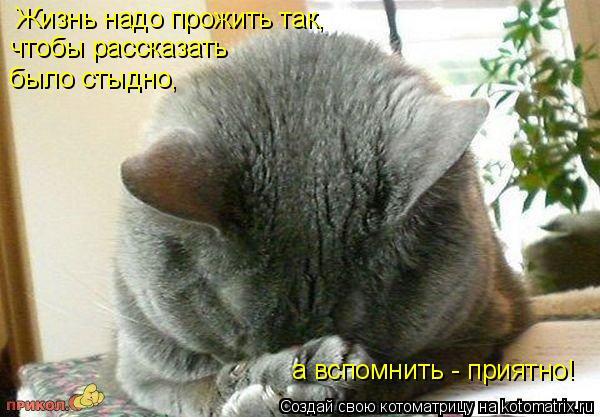 Котоматрица: Жизнь надо прожить так, чтобы рассказать было стыдно, а вспомнить - приятно!