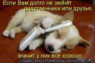 Котоматрица: Если Вам долго не звонят родственники или друзья, значит у них все хорошо...