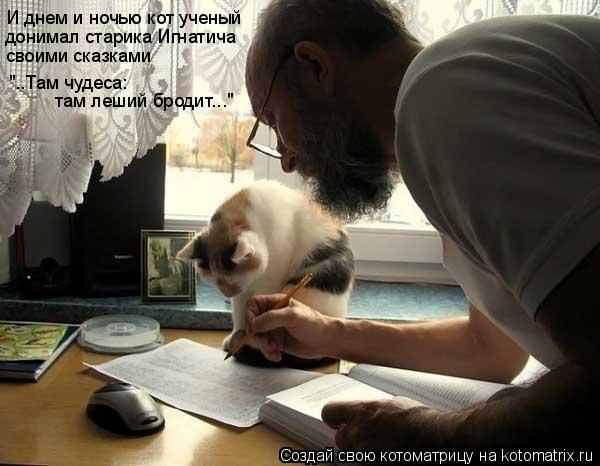 """Котоматрица: И днем и ночью кот ученый """"..Там чудеса:  донимал старика Игнатича своими сказками там леший бродит..."""""""