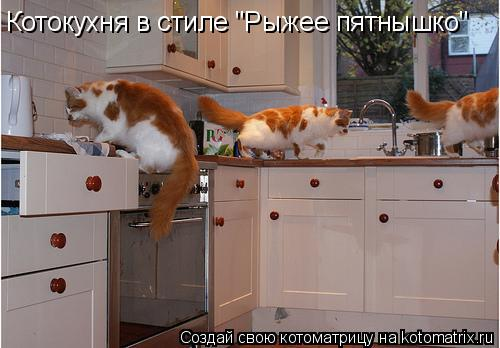 """Котоматрица: Котокухня в стиле """"Рыжее пятнышко"""""""