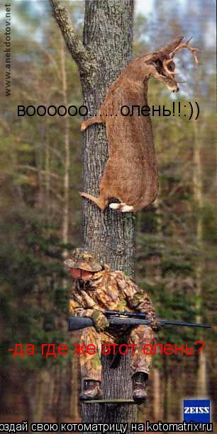 Котоматрица: -да где же этот олень? воооооо......олень!!:))