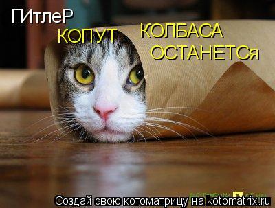 Котоматрица: ГИтлеР КОПУТ КОЛБАСА ОСТАНЕТСя