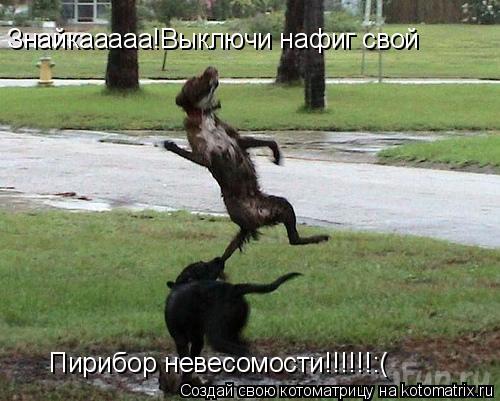 Котоматрица: Знайкааааа!Выключи нафиг свой  Пирибор невесомости!!!!!!:(