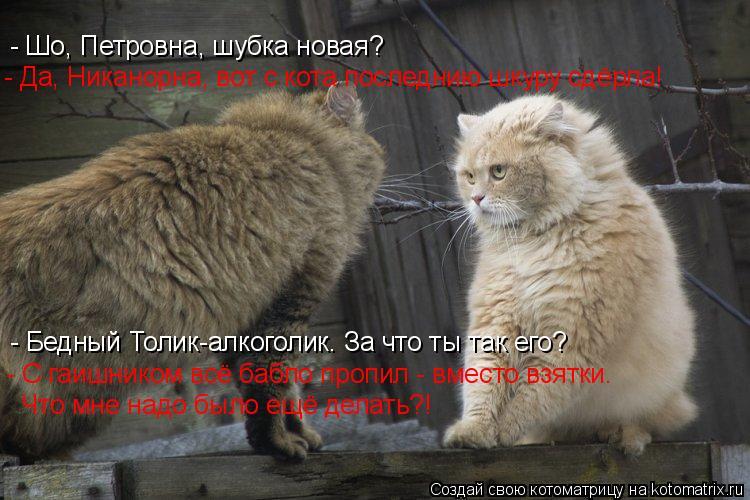 Котоматрица: - Шо, Петровна, шубка новая? - Да, Никанорна, вот с кота последнию шкуру сдёрла! - Бедный Толик-алкоголик. За что ты так его? - С гаишником всё баб