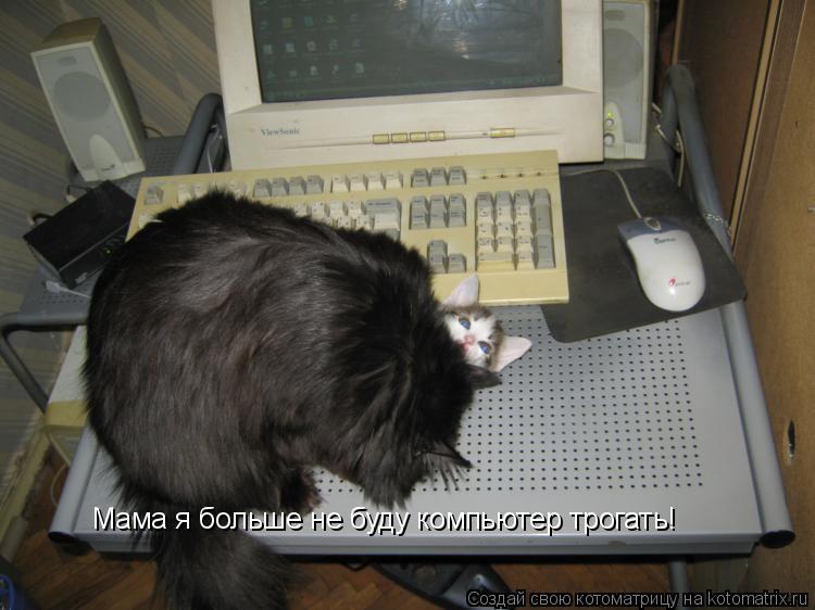Котоматрица: Мама я больше не буду компьютер трогать!