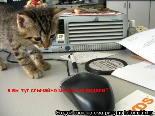 Котоматрица: а вы тут слычайно мышку не видали?