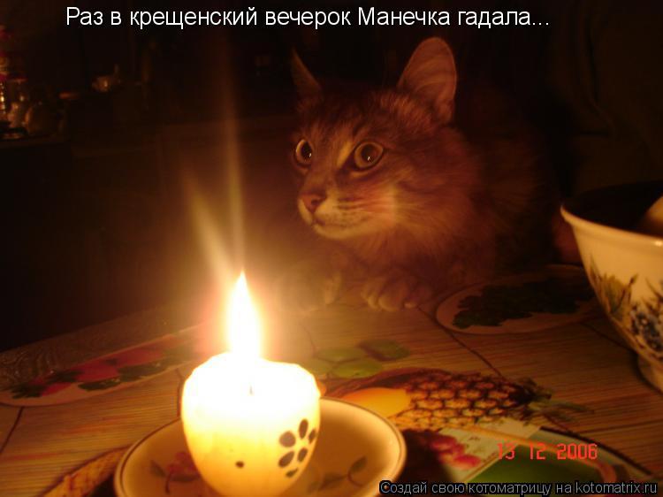 Котоматрица: Раз в крещенский вечерок Манечка гадала...