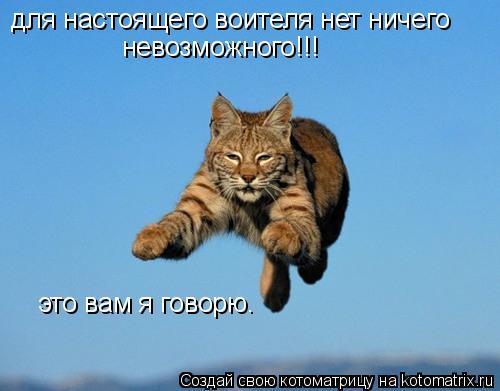 Котоматрица: для настоящего воителя нет ничего невозможного!!! это вам я говорю.