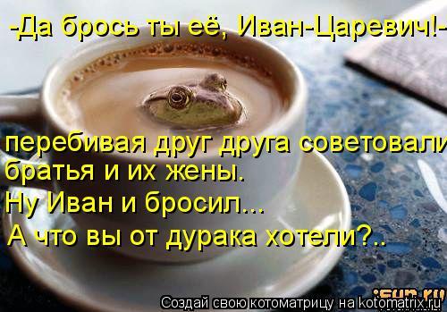 Котоматрица: -Да брось ты её, Иван-Царевич!- перебивая друг друга советовали братья и их жены. Ну Иван и бросил... А что вы от дурака хотели?..