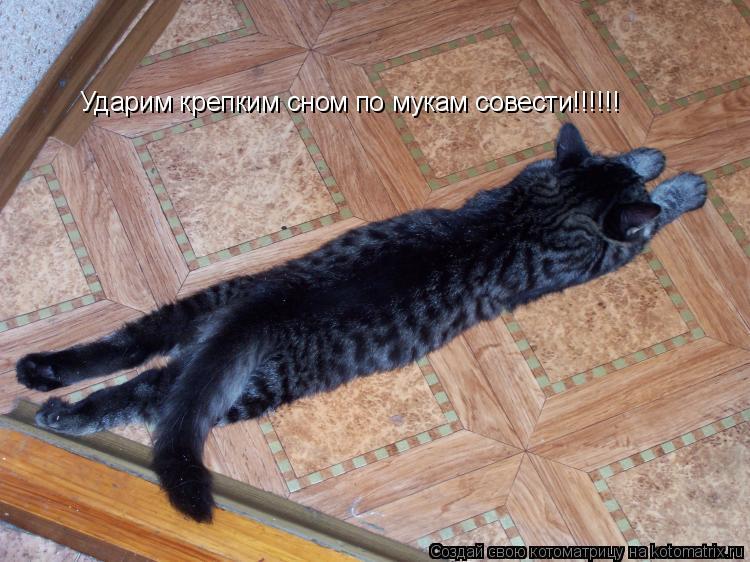 Котоматрица: Ударим крепким сном по мукам совести!!!!!!