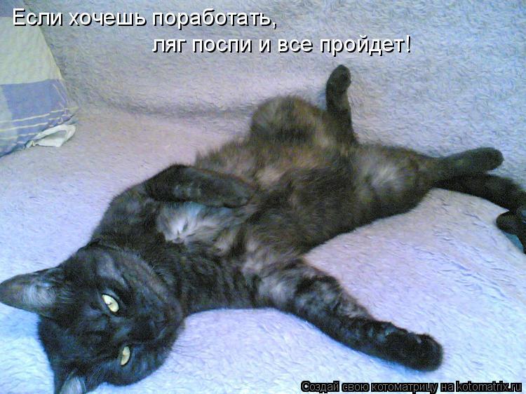 Котоматрица: Если хочешь поработать,  ляг поспи и все пройдет!