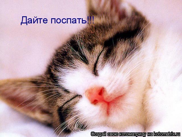 Котоматрица: Дайте поспать!!!