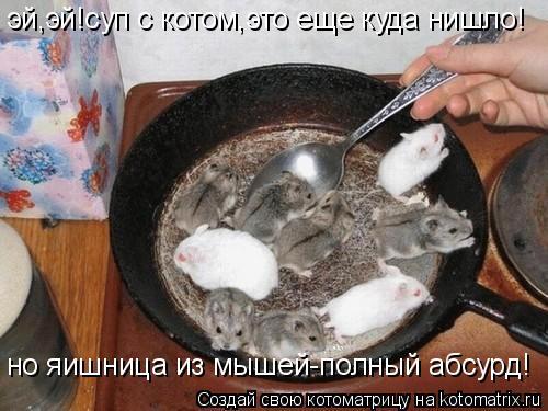 Котоматрица: эй,эй!суп с котом,это еще куда нишло! но яишница из мышей-полный абсурд!