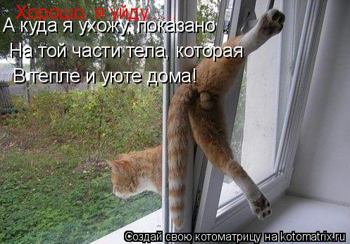 Котоматрица: Хорошо, я уйду...... А куда я ухожу, показано На той части тела, которая В тепле и уюте дома!