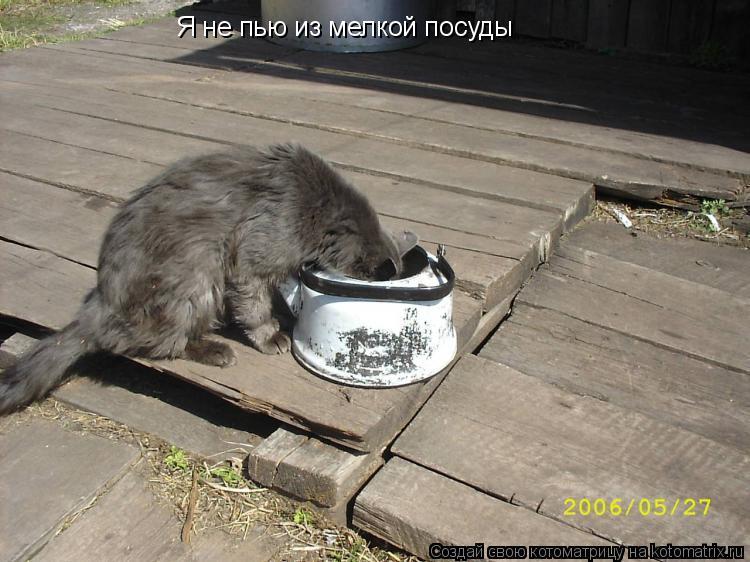 Котоматрица: Я не пью из мелкой посуды