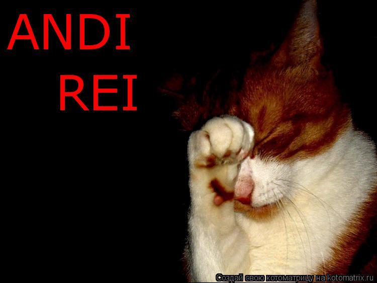 Котоматрица: ANDI  REI
