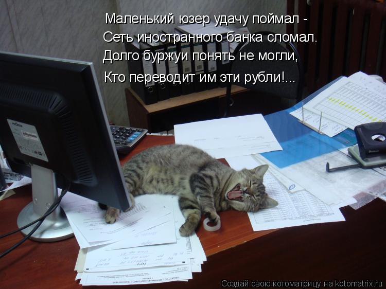 Котоматрица: Маленький юзер удачу поймал - Сеть иностранного банка сломал. Долго буржуи понять не могли, Кто переводит им эти рубли!...