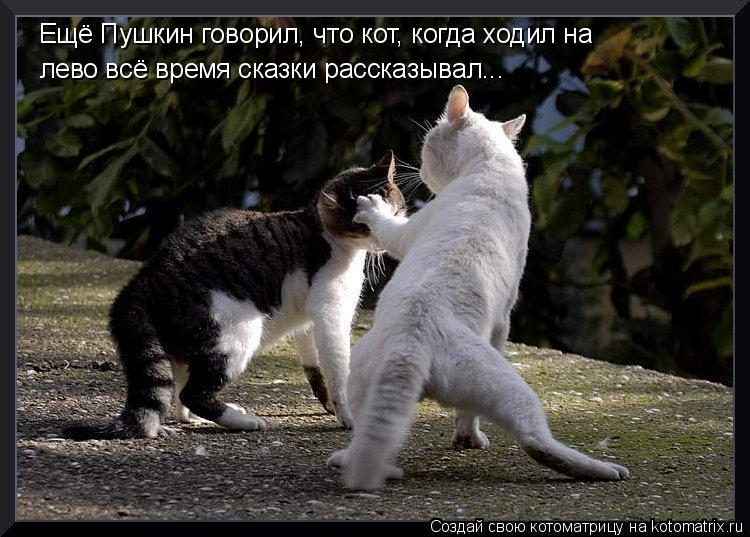 Котоматрица: Ещё Пушкин говорил, что кот, когда ходил на лево всё время сказки рассказывал...