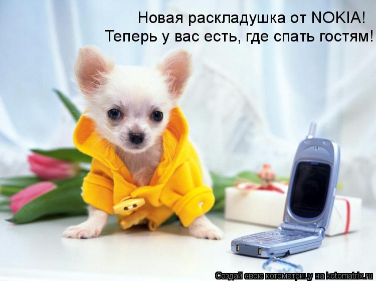 Котоматрица: Новая раскладушка от NOKIA! Теперь у вас есть, где спать гостям!