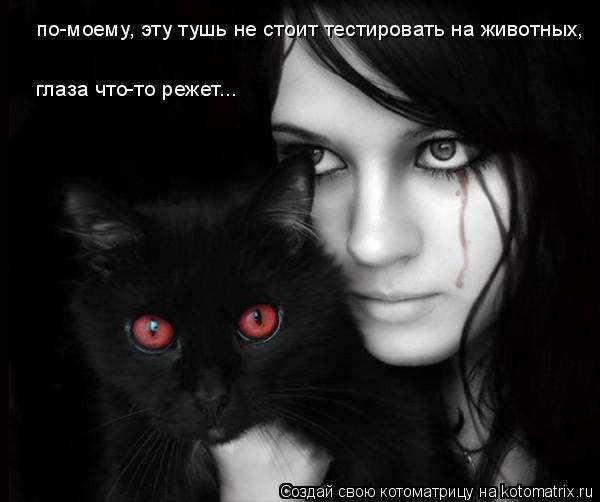 Котоматрица: по-моему, эту тушь не стоит тестировать на животных,  глаза что-то режет...