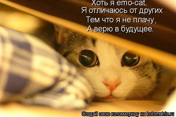Котоматрица: Я отличаюсь от других Тем что я не плачу  , Хоть я emo-cat, А верю в будущее.