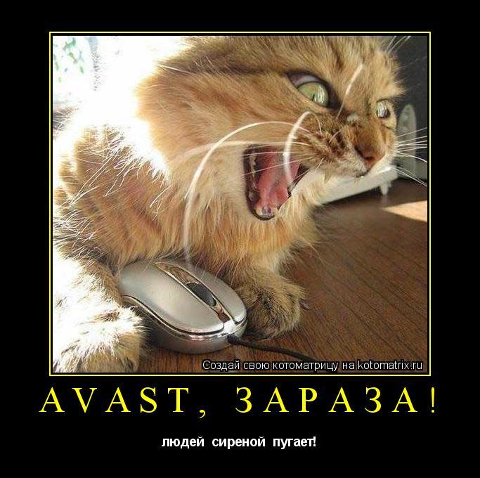 Котоматрица: avast, зараза! людей  сиреной  пугает!