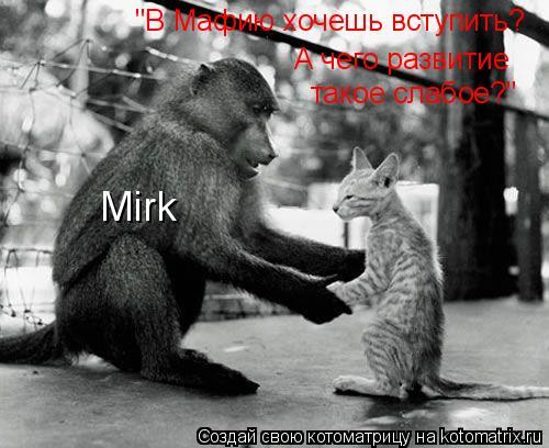 """Котоматрица: """"В Мафию хочешь вступить?  А чего развитие такое слабое?"""" Mirk"""
