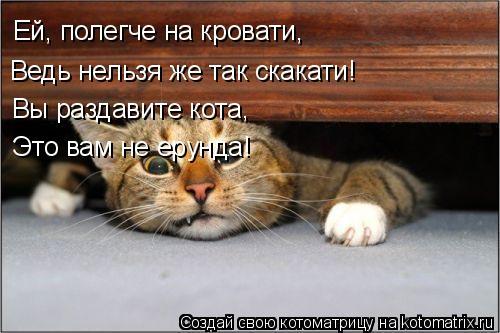 Котоматрица: Ей, полегче на кровати, Ведь нельзя же так скакати! Вы раздавите кота, Это вам не ерунда!