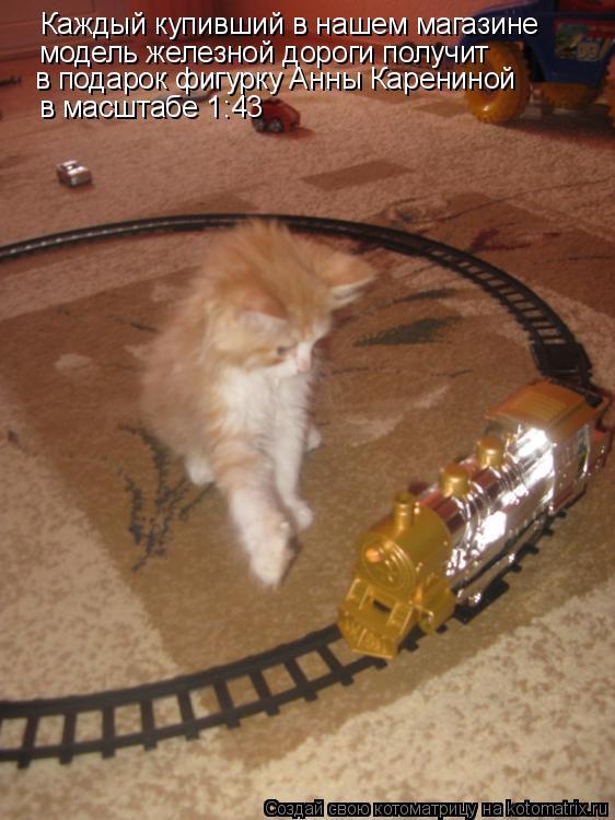 Котоматрица: Каждый купивший в нашем магазине модель железной дороги получит в подарок фигурку Анны Карениной в масштабе 1:43