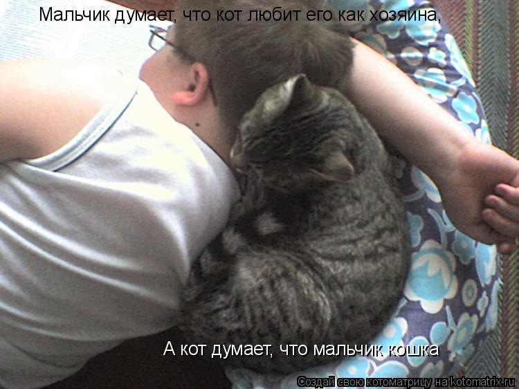 Котоматрица: Мальчик думает, что кот любит его как хозяина, А кот думает, что мальчик кошка
