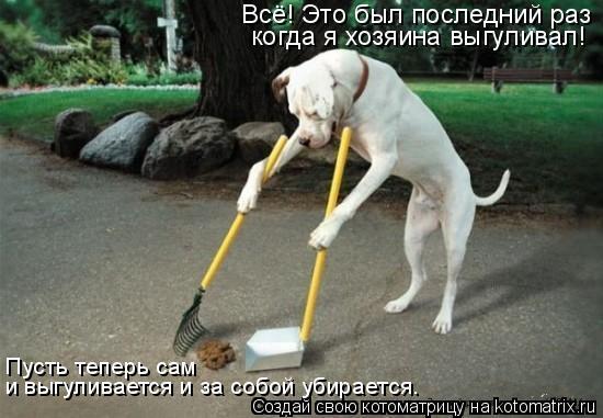 Котоматрица: Всё! Это был последний раз когда я хозяина выгуливал! Пусть теперь сам  и выгуливается и за собой убирается.