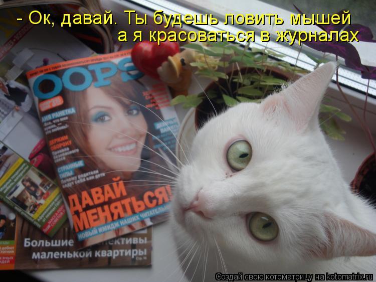 Котоматрица: - Ок, давай. Ты будешь ловить мышей а я красоваться в журналах