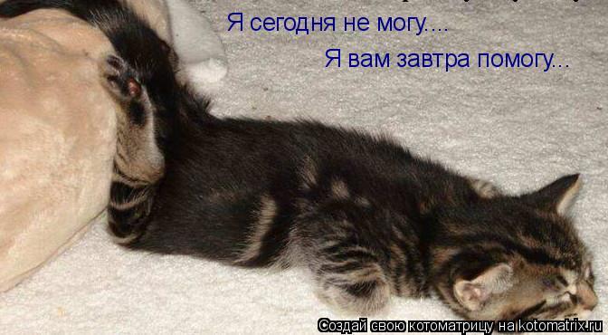 Котоматрица: Я сегодня не могу.... Я вам завтра помогу...