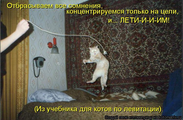 Котоматрица: Отбрасываем все сомнения, концентрируемся только на цели, и... ЛЕТИ-И-И-ИМ! (Из учебника для котов по левитации)