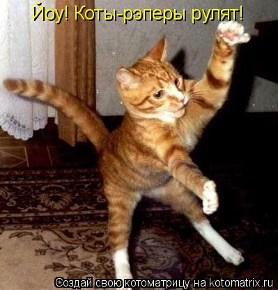 Котоматрица: Йоу! Коты-рэперы рулят!
