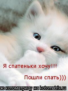 Котоматрица: Я спатеньки хочу!!! Пошли спать))) Я спатеньки хочу!!! Пошли спать)))