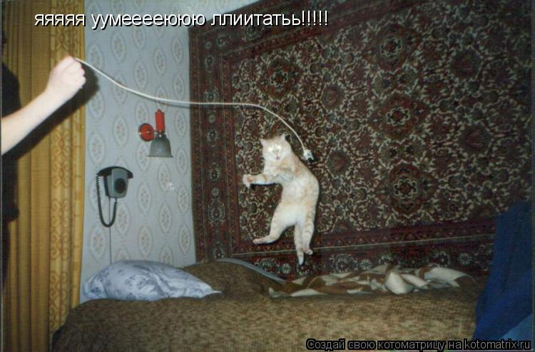 Котоматрица: яяяяя уумееееююю ллиитатьь!!!!!