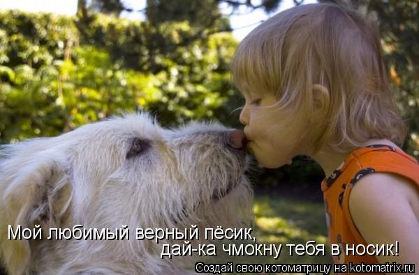 Котоматрица: Мой любимый верный пёсик, дай-ка чмокну тебя в носик!