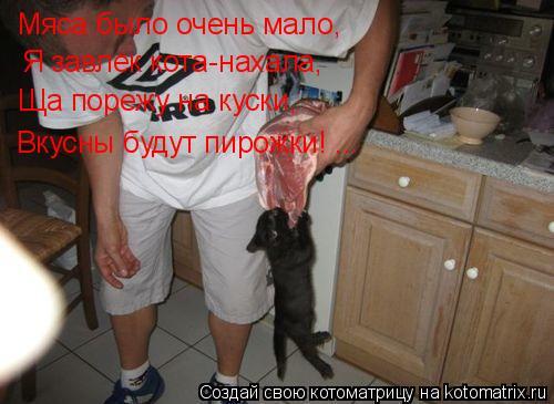 Котоматрица: Мяса было очень мало, Я завлёк кота-нахала, Ща порежу на куски, Вкусны будут пирожки! ...