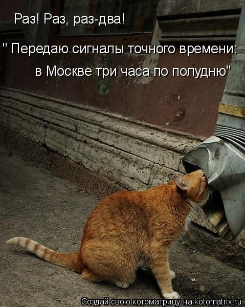 """Котоматрица: Раз! Раз, раз-два! """" Передаю сигналы точного времени: в Москве три часа по полудню"""""""