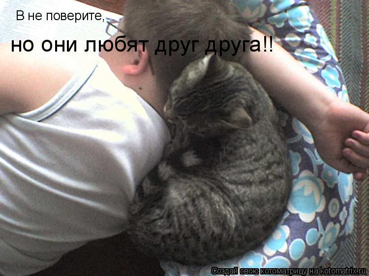 Котоматрица: В не поверите, но они любят друг друга!!
