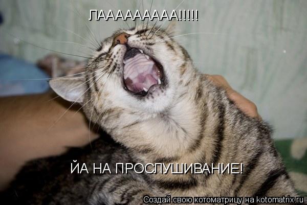 Котоматрица: ЛААААААААА!!!!! ЙА НА ПРОСЛУШИВАНИЕ!
