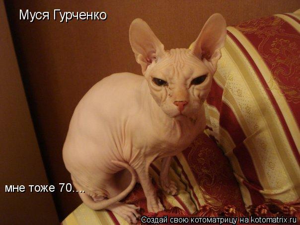 Котоматрица: Муся Гурченко мне тоже 70....