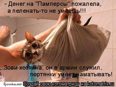 """Котоматрица: - Денег на """"Памперсы"""" пожалела, а пеленать-то не умеешь!!! Зови хозяина, он в армии служил, портянки умеет наматывать!"""
