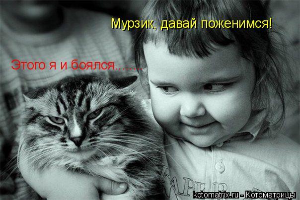 Котоматрица: Мурзик, давай поженимся! Этого я и боялся........