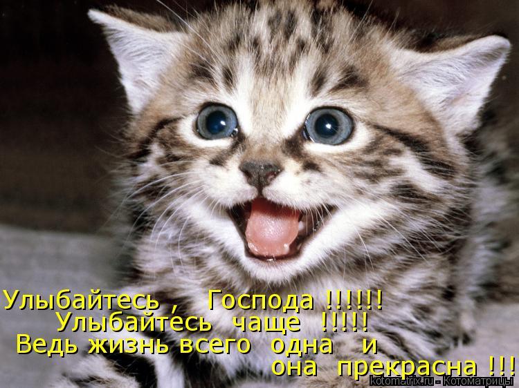 Котоматрица: Улыбайтесь ,   Господа !!!!!! Улыбайтесь  чаще  !!!!! Ведь жизнь всего  одна   и  она  прекрасна !!!!